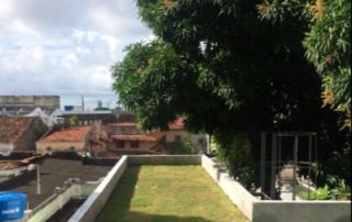 HSBS adota telhado verde